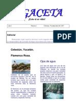 Microsoft Word - Gaceta Celestun