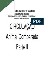 bio335-circulacao-02
