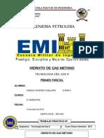 Hidrato de Gas Metano Vianca Caceres Challapa a9469-2