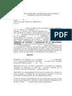 DEMANDA DE NULIDAD DEL CONTRATO DE UNA SOCIEDAD Y LIQUIDACIÓN DE SU PATRIMONIO