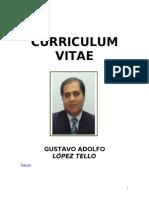 Curriculum Vitae Gustavo Adolfo López Tello_Diciembre_2013