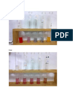 Gambar Result Lab Anthocyanin