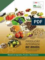 PI_Brasil
