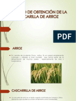 Cascarrilla de Arroz