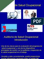 4) Auditoría de Salud Ocupacional