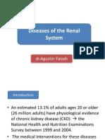Kidney Disease, Tugas Prof Fat
