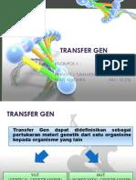 Transfer Gen (Kelompok II)