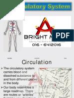 Bio Form 5 Circulatory System