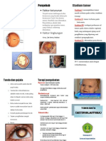 Leaflet Retinoblastoma