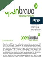 Open Bravo