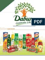 VRIO Analysis, Porters 5 Force Model & Value Chain- Dabur India Ltd.