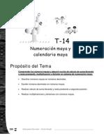 Numeracion Maya 6 Grado Docentes