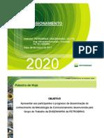 Comissionamento Petrobras
