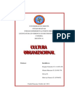 DEFINICIÓN DE CULTURA ORGANIZACINAL