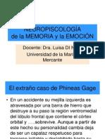 NP Emoción y memoria neurodi nolfo