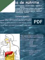 Sistemul Digestiv ( Complet)