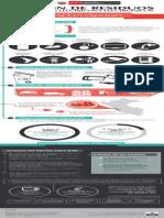 infografia_raee