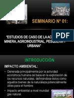 Estudios de caso de laS industrias.pptx