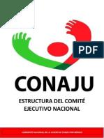 Estructura Oficial Conaju