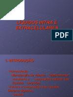 Líquidos Intra e Extracelulares