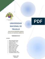 SEMINARIO saneamiento ambiental.docx