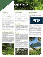 Flyer Info Martinique V1