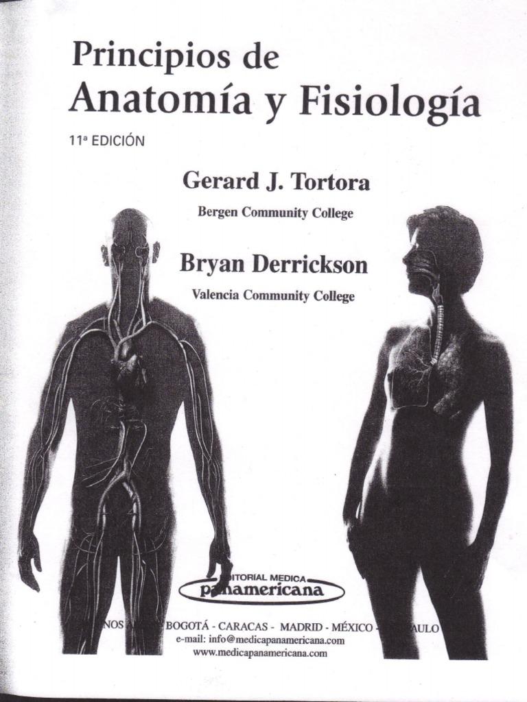 Lujoso Anatomía Y Fisiología Y Patton Thibodeau 8ª Edición ...