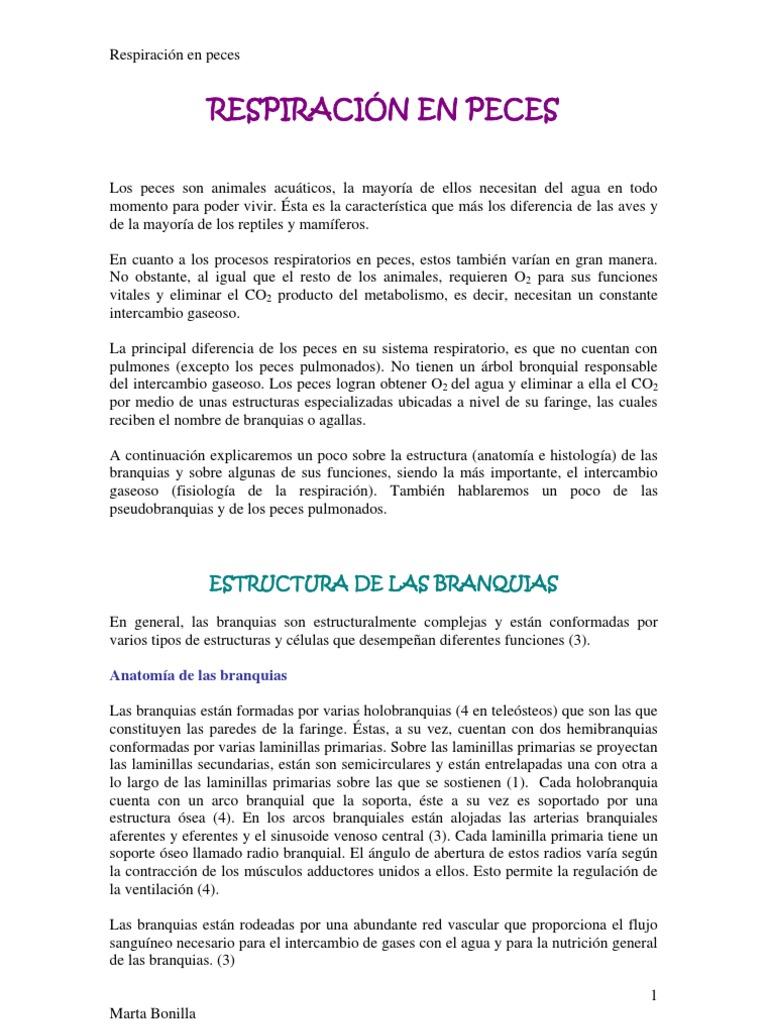 Perfecto Anatomía De Agallas De Los Peces Inspiración - Imágenes de ...
