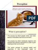 2 - Perception theory