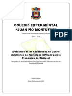 Colegio Experimental 1
