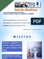 micciondefisio2cesar-110414014550-phpapp01