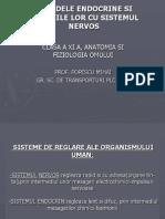 lectieglandeendocrine (1)