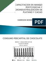 Agroindustralizacion Del Cacao