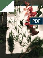 Variation of Plants
