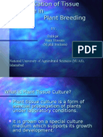 Molecular Plant Breeding & Tissue Culture Techniques