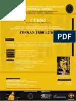 1 DISEÑO IMPLEMENTACION Y AUDOTORIA OSHAS 18001-2007