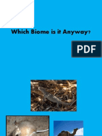 which biome is it anyway