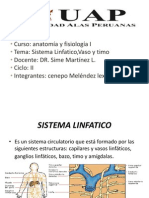 Diapositiva Sistema Linfatico