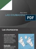 14 Las Chumaceras