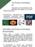 Microflora de frutas e hortaliças fermentadas