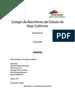 SABANA BLOG.docx