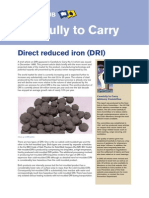 Direct Reduced Iron.pdf