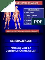 Contraccion Muscular Geocha