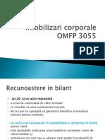 Imobilizari corporale OMFP 3055