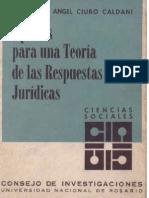 Aportes Para Una Teoria de Las Respuestas Juridicas - Miguel a Ciuro Caldani