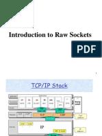 Original RawSockets(1)