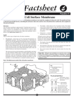008 - The Cell Surface Membrane
