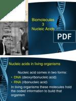 Biological Molecules 3.pptx