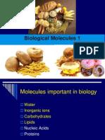 Biological Molecules 1.ppt
