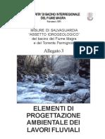 Aree-laminazione-esempi-Progettazione Lavori Fluviali AdB Magra